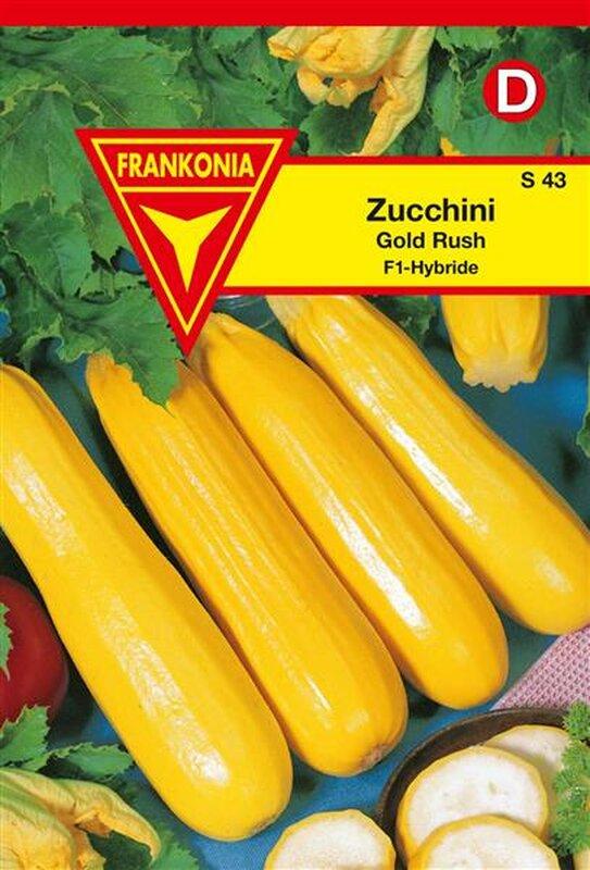 zucchini gold rush f1 1 49. Black Bedroom Furniture Sets. Home Design Ideas