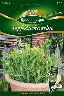 "Topf Zuckererbse /""Norli/""  Samen   Quedlinburger Premium Saatgut"