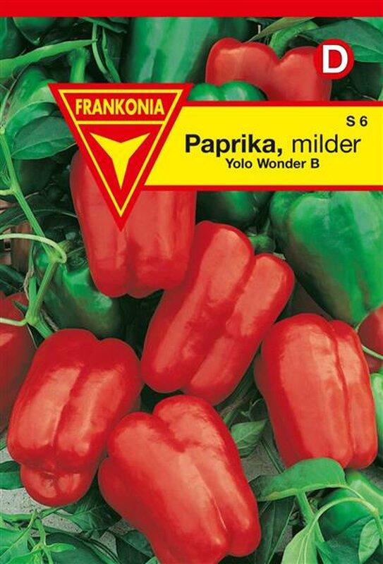 Paprika Yolo Wonder B
