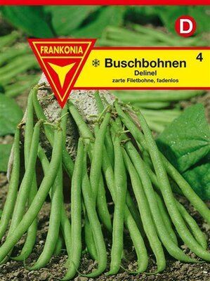 Delinel Buschbohne 4